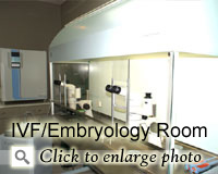IVF/Embryology Room
